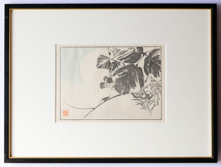 Single Insect - Japanese Woodblock