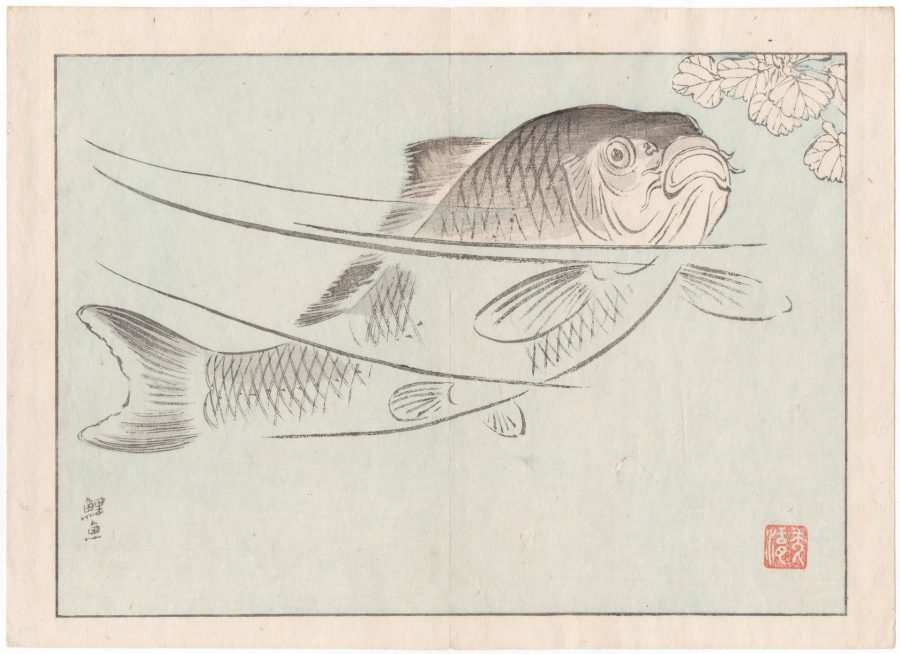 Single Large Fish - Japanese Woodblock