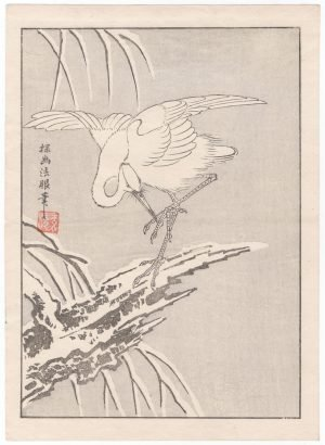 Single Seabird - Japanese Woodblock