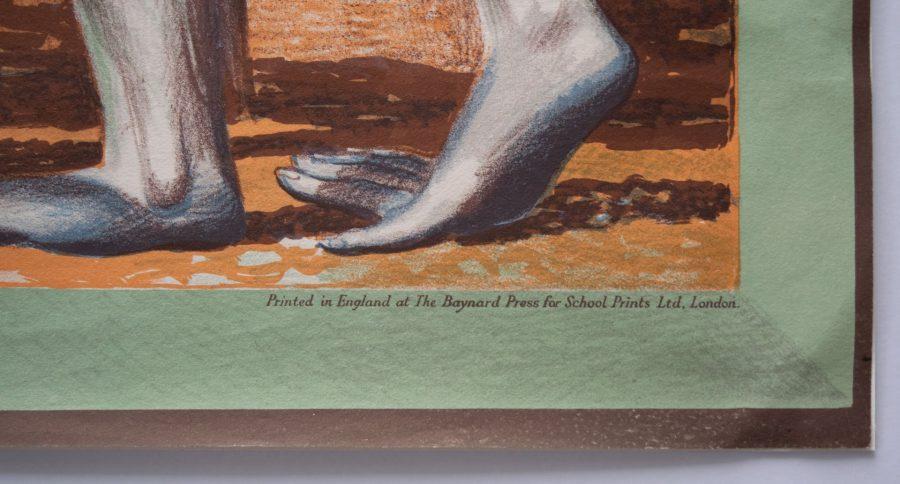 Mandrill and Mangabeys School Print